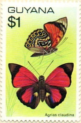 Overprint Stamps Guyana 1971 Trees and Blossoms SG 620 Hanging Heliconia Surcharged Fine Used Scott 209