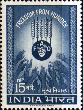 India 1963 Freedom from Hunger SG 466 Fine Mint