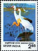India 1983 International Crane Workshop SG 1076 Fine Mint