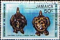 Jamaica 1980 Institute of Jamaica  Hawksbill Turtle and Green Turtle SG 496 Fine Used