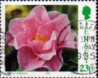 Jersey 1995 Camellias SG 694 Fine Used