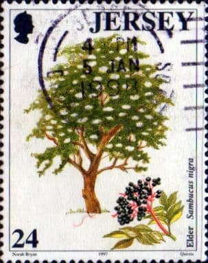 Jersey 1997 Trees SG 831 Fine Used
