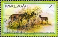 Malawi 1981 Wildlife SG 633 Fine Used