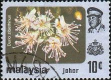 Malay State of Johore 1979 Flowers SG 191 Fine Used