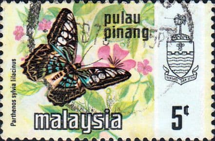 Malay State of Penang 1977 Butterflies SG 82 Fine Used