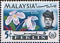 Malay State of Perlis 1965 Flowers Orchids SG43 Fine Mint