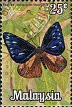 Malaysia 1970 Butterflies SG 64 Fine Used