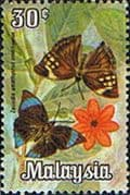 Malaysia 1970 Butterflies SG 65 Fine Used