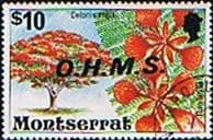 Montserrat 1976 Official OHMS SG O16 Fine Used