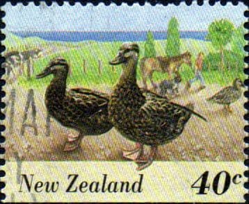 New Zealand 1995 Farmyard Animals SG 1900 Fine Used