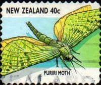 New Zealand 1997 Insects SG 2110 Fine Used