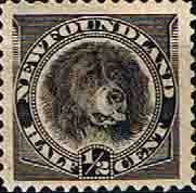 Newfoundland 1894 SG 59 Dog Fine Mint