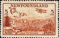 Newfoundland 1933 Air Mail SG 230 Fine Mint