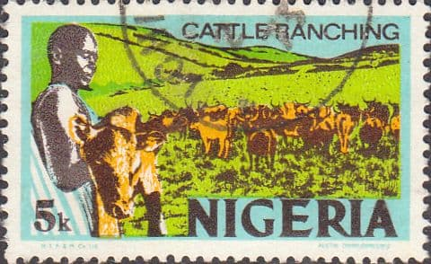Nigeria 1973 SG 282a Cattle Ranching Fine Used
