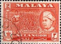 Selangor 1957 SG 117 Sultan and Pineapples Fine Used