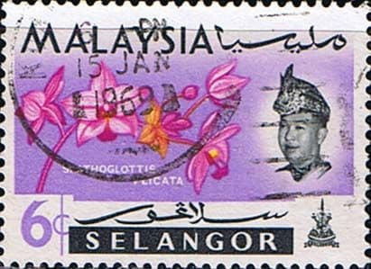 Selangor 1965 Flowers Orchids SG 139 Fine Used