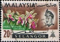 Selangor 1965 Flowers Orchids SG 142 Fine Used