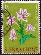 Sierra Leone 1963 SG 249 Beautiful Crinum Fine Used