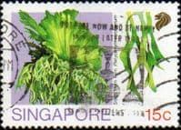 Singapore 1990 Ferns SG 641 Fine Used