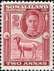 Stamps Somaliland Protectorate King George VI SG 107 Scott 98 Fine Mint