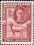 Somaliland Protectorate 1942 King George VI SG 107 Fine Mint