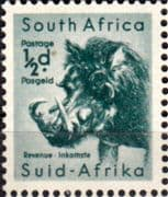 South Africa 1954 Wild Animals SG 151 Warthog Fine Used