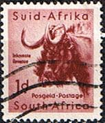 South Africa 1954 Wild Animals SG 152 Wildebeest Fine Used