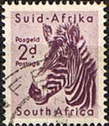 South Africa 1954 Wild Animals SG 154 Zebra Fine Used