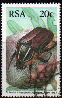 South Africa 1987 African Beetles SG 613 Fine Used