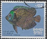 Sri Lanka 1972  Fishes SG 594 Fine Used