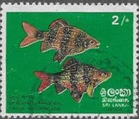 Sri Lanka 1972  Fishes SG 597 Fine Used
