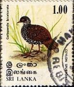Sri Lanka 1979 Birds SG 687 Fine Used