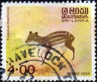 Sri Lanka 1982 Animals SG 782 Fine Used