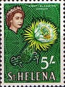 St Helena 1961 Plant Night-blooming Cereus SG 187 Fine Mint
