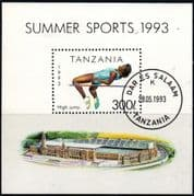 Tanzania 1993 Sports Miniature Sheet Fine Used