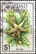Trinidad and Tobago 1983 Flowers SG 646 Fine Used