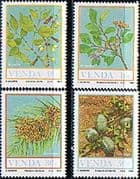 Venda 1987 Food from the Veld Set Fine Mint