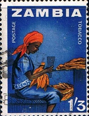 Zambia 1964 Industries SG  102 Fine Used